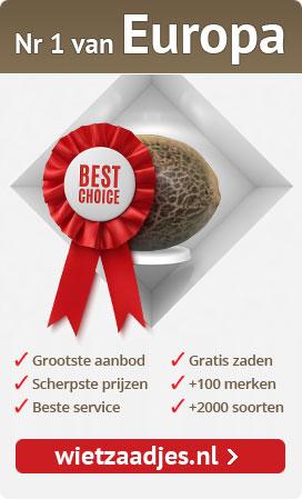 Wietzaadjes.nl - Nr 1 van Europa in cannabis zaden.